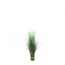 Grasses bundle